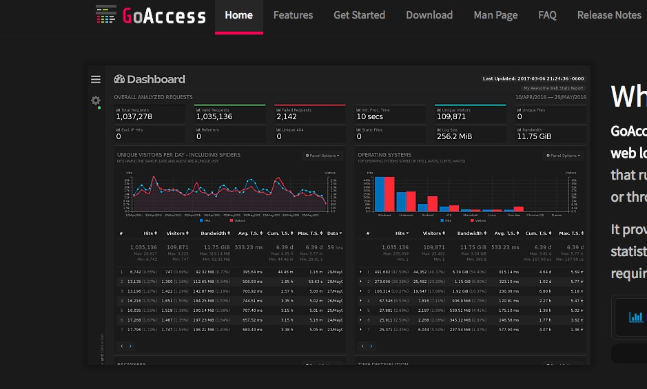 GoAccess, how to get started